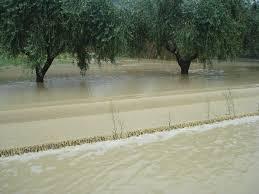 MALTEMPO. CLIMA, COLDIRETTI: ITALIA AL GELO IN GENNAIO CON 23 EVENTI ESTREMI.